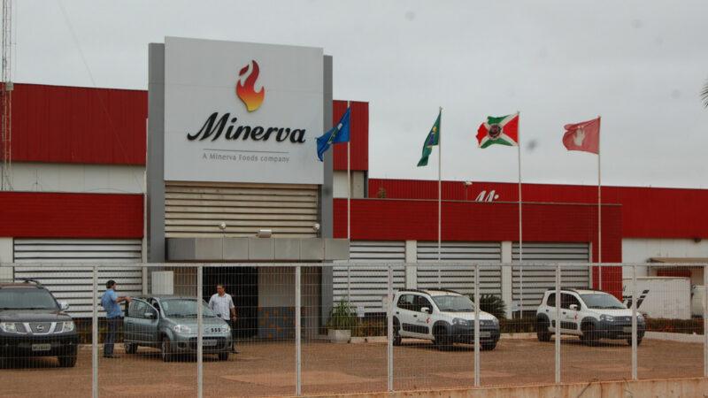 Radar: Diretor da Minerva (BEEF3) revela informação privilegiada, Energisa (ENGI11) pagará dividendos e Magalu (MGLU3) reverte prejuízo