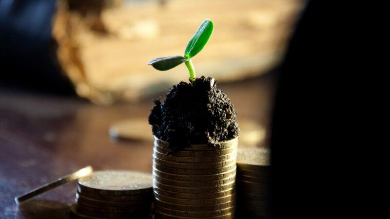 Tributação de dividendos afeta investidor, mas pode estimular atividade