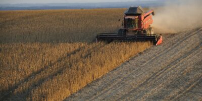 SLC Agrícola (SLCE3) dispara 13,40% após valorização de suas terras