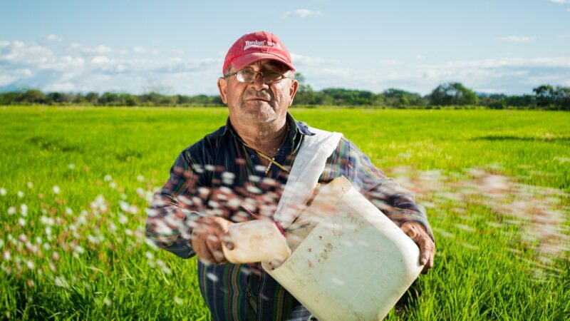 IPO da 3tentos (TTEN3): Saiba por que o agro está invadindo a Faria Lima