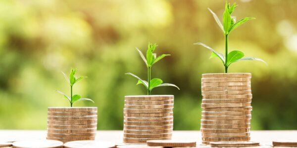 Reforma do Imposto de Renda: relator afirma que vai tirar tributação de dividendos do texto